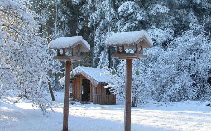 Foderhuse til haven vinterfugle
